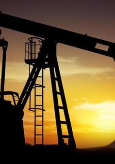Nga trở thành nước xuất khẩu dầu số 1 thế giới