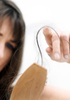 """""""Bí kíp"""" chống rụng tóc từ thảo dược"""