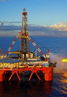 PVN đẩy mạnh khoan giếng mới để gia tăng sản lượng dầu thô