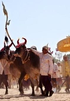 Campuchia long trọng tổ chức Lễ Hạ điền