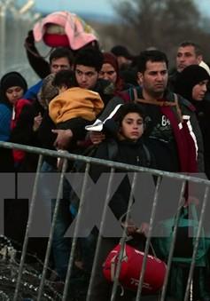 Macedonia đóng cửa biên giới với người di cư