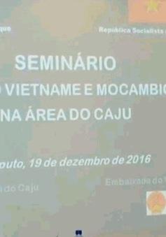 Việt Nam - Mozambique hợp tác phát triển cây điều