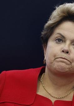 Điểm nhấn quốc tế ngày 1/9: Brazil phế truất Tổng thống Dilma Rousseff