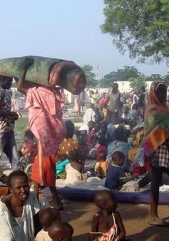 Nam Sudan: Lệnh ngừng bắn được thực thi tại Juba