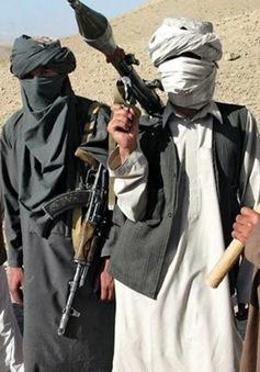 Đại diện cấp cao Taliban bí mật đến Pakistan chuẩn bị hòa đàm