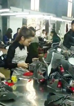 DN vừa và nhỏ tại Việt Nam vẫn khó phát triển