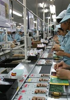 80% DN có vốn của người Việt ở nước ngoài chọn TP.HCM làm nơi đầu tư