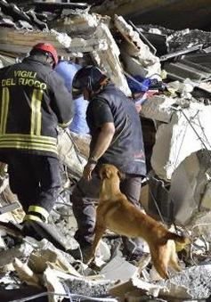 Thế giới tưởng nhớ nạn nhân động đất tại Italy