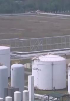 Nhà máy lọc dầu Dung Quất hoạt động 105% công suất