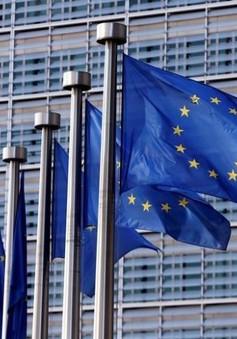 Ủy ban châu Âu tăng cường chống rửa tiền và tài trợ khủng bố