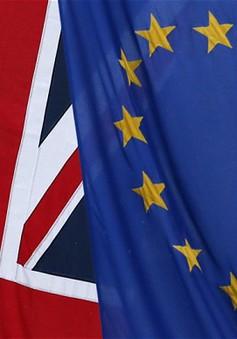 Nhiều nước châu Âu không chấp nhận các điều kiện của Anh