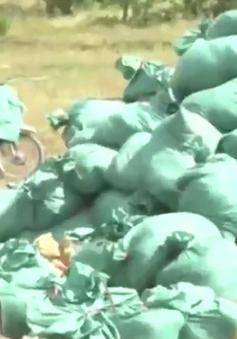 Thị xã Kỳ Anh, Hà Tĩnh ra quân thu gom rác thải của Formosa