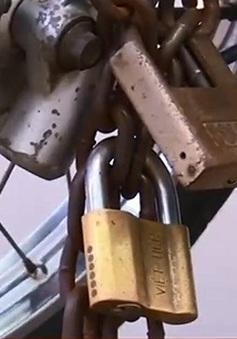 Nạn trộm cắp diễn biến phức tạp tại Bình Dương dịp cận Tết