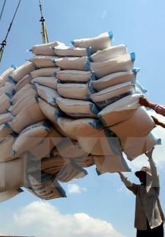 Xuất khẩu khu vực DN vốn trong nước tăng trưởng 3,9%