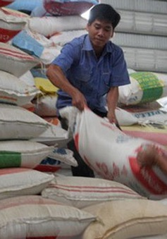 Hỗ trợ 7.000 tấn gạo cho người dân vùng khó khăn
