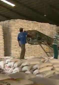 Thêm rào cản mới với xuất khẩu gạo sang Trung Quốc
