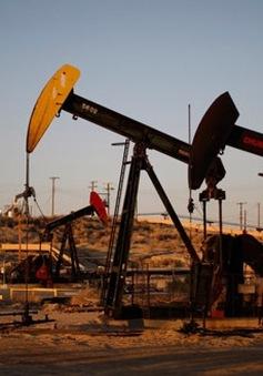 Giá dầu thế giới tăng lên mức cao nhất từ đầu năm 2016