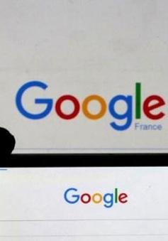 Trốn thuế, Google đối mặt án phạt 400 triệu USD tại Indonesia