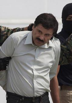 Mexico chuyển nhà tù trùm ma túy El Chapo