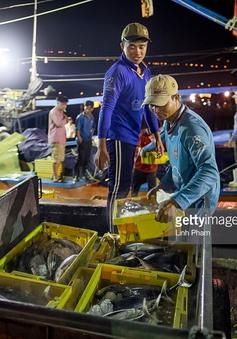 Xuất khẩu hải sản sang EU biến chuyển tốt trong đầu năm 2018