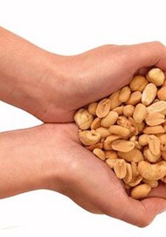 Ăn các loại hạt mỗi ngày giảm nguy cơ ung thư