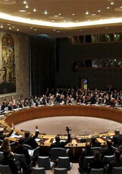 Hội đồng Bảo an chia rẽ trước nghị quyết về Syria