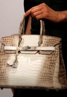 Chiếc túi đắt giá nhất thế giới có giá 7 tỷ đồng
