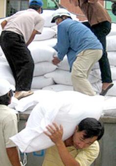 975 tấn gạo hỗ trợ cho Gia Lai và Lào Cai
