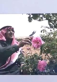 Nghề trồng hoa hồng ở Damascus mai một vì chiến tranh