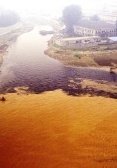 """Dòng sông """"ung thư"""" tại Trung Quốc"""