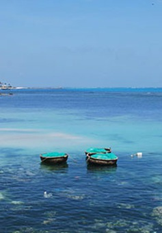 Ban hành quy chế quản lý khu bảo tồn biển Lý Sơn