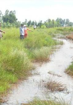 Cà Mau: Khô hạn ảnh hưởng nghiêm trọng tới đời sống người dân