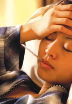 Bệnh sốt vàng có nguy cơ xâm nhập vào Việt Nam