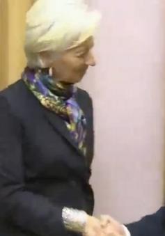Chủ tịch nước tiếp Tổng Giám đốc điều hành IMF