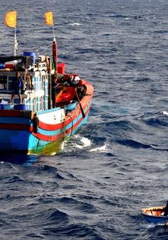 Bình Thuận: Một ngư dân mất tích ở Trường Sa