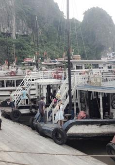 Cháy tàu hạng sang, Quảng Ninh siết chặt quản lý tàu vỏ gỗ