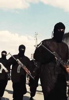 Không quân Nga tiêu diệt hơn 200 tay súng IS