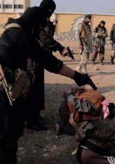 IS hành quyết hơn 100 dân thường quanh Mosul (Iraq)
