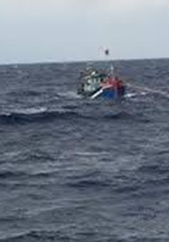Vùng 3 Hải quân lai dắt tàu cá gặp nạn vào bờ an toàn