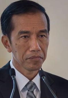 Indonesia sẽ tích cực giải quyết xung đột ở Biển Đông