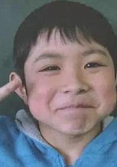 Cậu bé Nhật Bản sống sót kỳ diệu sau 6 ngày mất tích trong rừng