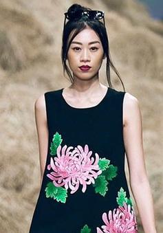 Kikki Lê hủy tham gia Asia's Next Top Model