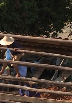 Lào Cai chung tay khắc phục hậu quả sau bão số 3