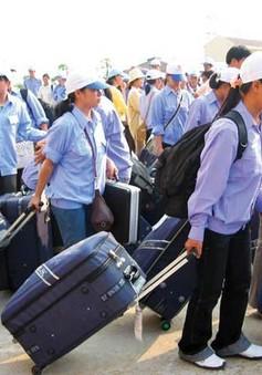 Tạm dừng tuyển dụng lao động đi Hàn Quốc năm 2016 ở một số địa phương