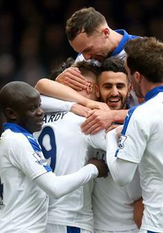 Nếu vô địch, Leicester viết nên câu chuyện kỳ thú nhất lịch sử
