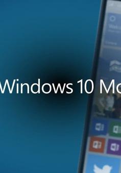 Microsoft tung video hướng dẫn nâng cấp lên Windows 10 Mobile