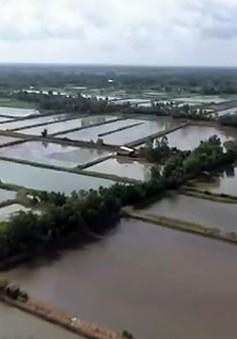Biến đối khí hậu khiến lũ về muộn ở ĐBSCL