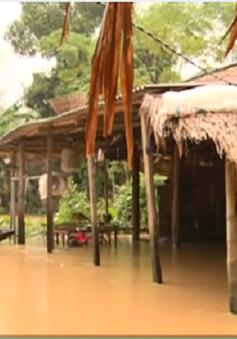 20 người thiệt mạng và mất tích do mưa lũ miền Trung