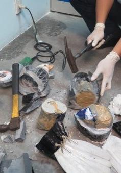 Bắt vụ vận chuyển ma túy lớn đầu năm 2016 ở sân bay Tân Sơn Nhất