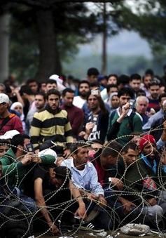 Hy Lạp chỉ trích Macedonia trấn áp người di cư